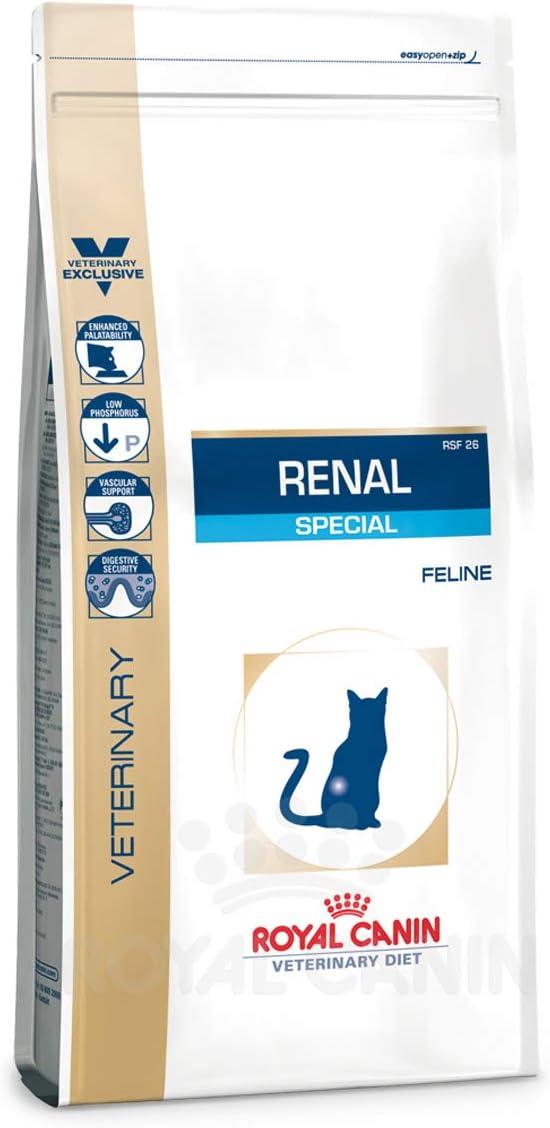 Royal Canin Renal Special - Comida para Gatos, 500 gr