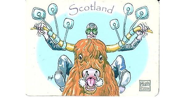 Manillar de vaca de Escocia imán para nevera: Amazon.es: Hogar