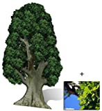Oak Tree - Large Cardboard Cutout / Standee / Standup - Includes 8x10 (20x25cm) Star Photo