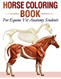 Horse Coloring Book For Equine Vet Anatomy Students: 35+ Incredibly Highly Detailed Pictures Of Horses To Help You Make…