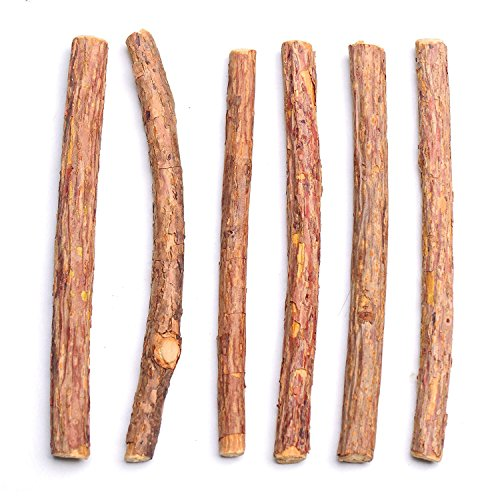 Leap-ss Pet Chew Toy Catnip Sticks Natural Wood Cat Stick Dental Health Brush Teeth Treat for Cat (10 pack) (Dynamite Stick 2 1)