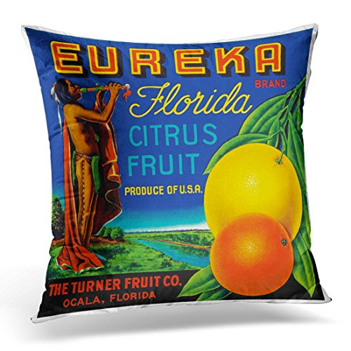 TORASS Throw Pillow Cover Vintage Florida Citrus Fruit Label Retro Ads Moffa Decorative Pillow Case Home Decor Square 20x20 Inches Pillowcase