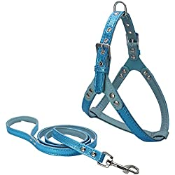 Dogs Kingdom Luxury Leather Pet Harness and Leash For Cats Puppy Small Medium Dogs Blue One Size