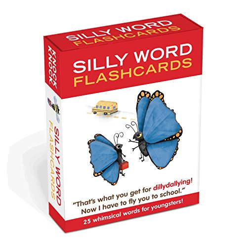 25 Flash Cards (Knock Knock Silly Words)