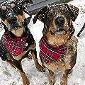 H-Shero 2 Pack Christmas Pet Dog Bandanas Collar Triangle Bibs Scarf, Double-Cotton Plaid Printing Kerchief Set for Medium Size Dogs by H-Shero