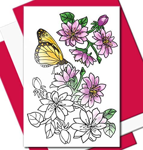 Art Eclect Adult Coloring Flower Greeting Cards for Birthdays, Thank You and Sympathy Cards (20 Cards With 20 Different Unique Designs 10 Fuchsia and 10 White Envelopes, Set B20/PinkWhite - 20 Cards)