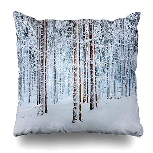 Ahawoso Throw Pillow Cover Square 18x18 Natural Taiga Spruce Forest Snow On Trees Nature Twig Parks Boreal Branch Cold Conifer Coniferous Design Zippered Cushion Case Home Decor - Twigs Frozen