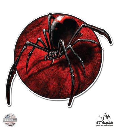 Black Widow Spider - 5