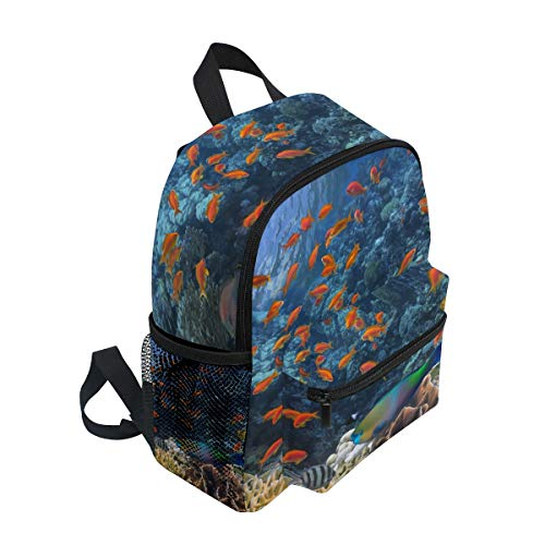 Boy Rucksack for On School Toddler Children Reef Backpack Book BALII Fish Coral Tropical Girl Bag PnvqTzO