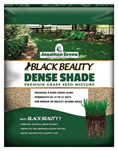Jonathan Green 10620 Dense Shade Grass Seed Mix, 7 Pounds