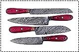 World Points Custom Handmade Damascus Steel Splendid Kitchen Set Knives Lots of 4