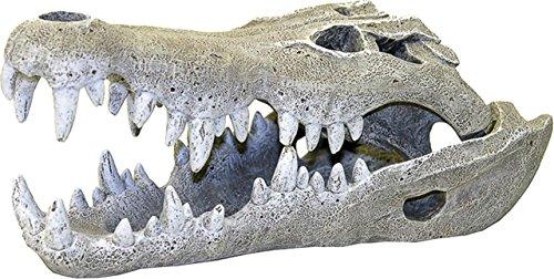 Blue Ribbon Exotic Environments Nile Crocodile Skull Aquarium Ornament, Small, 3-Inch by 6-Inch by 2-1/2-Inch