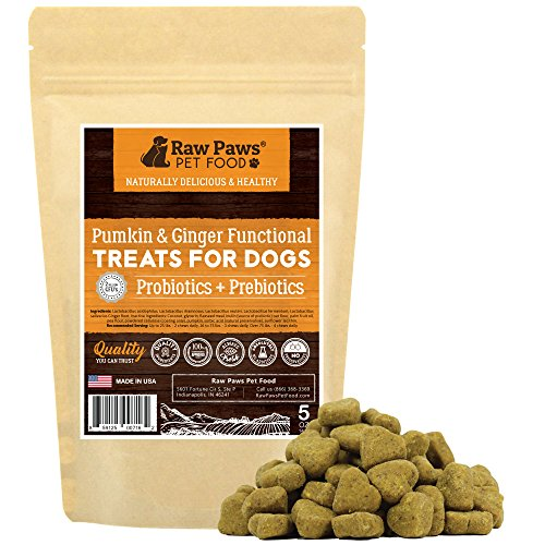 Cheapest Raw Paws Pet Probiotics for Dogs with Prebiotics Functional Treats, Pumpkin & Ginger, 5-ounce Soft Chews - Made in USA Only - 2 Billion CFU's - Supports Digestive Health - Diarrhea Relief Check this out.