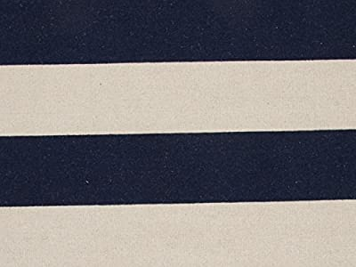 2' x 3' Navy Blue and Tan Tierra Flat-Weave Striped Pattern Wool Area Throw Rug