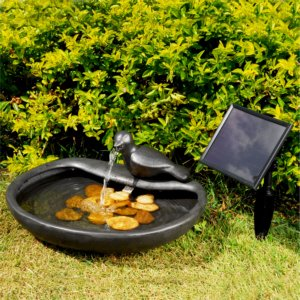 Solarbrunnen Taube Amazonde Garten