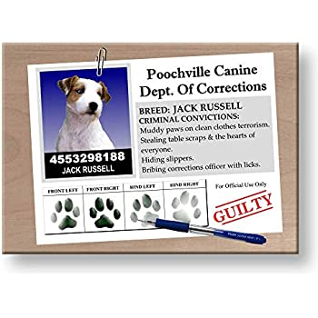 JACK RUSSELL Colourful Metal Fridge magnet Sign DOGS