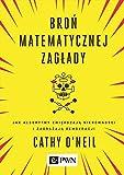 img - for Bron matematycznej zaglady book / textbook / text book