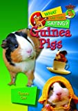 Guinea Pigs, Tamra Orr, 1624690300