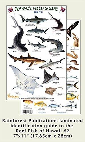 Hawaii Reef Fish #2 Identification Guide (Laminated Single Sheet Field Guide (Hawaii Field Guides) (v. 1) (English and Spanish Edition) (Hawaii Reef Fish)