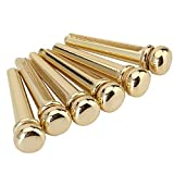 Hobees Set of 6 Acoustic Guitar Bridge Pins - (Gold)
