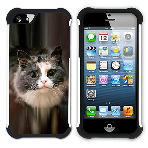 STPlus Gato en una caja Animal Doble Capa de Protección Rígido + Flexible Silicona Carcasa Funda Para Apple iPhone SE / 5 / 5S #16