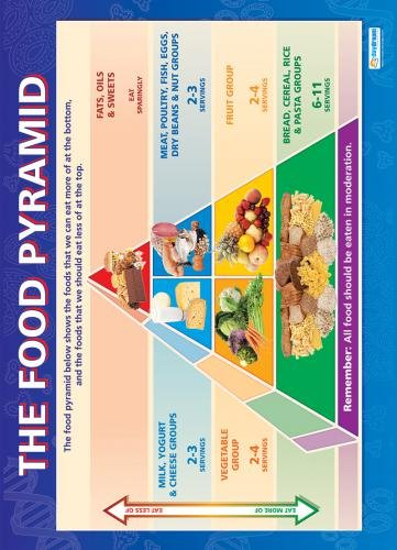 Food Pyramid |Science Educational Chart/Poster in high gloss paper (33