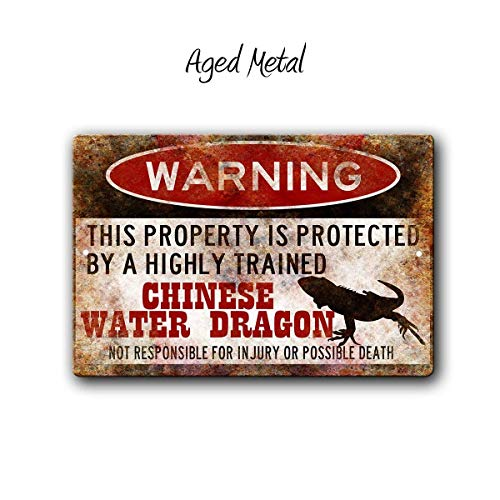 FemiaD Chinese Water Dragon Sign,Funny Metal Signs,Water Dragon Accessories,Lizard Warning Sign Aluminum Metal Sign 12 X 16 ()