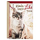 Hallmark Valentines Day Card for Cat Person/New Relationship (Kinda, Sorta Like You)