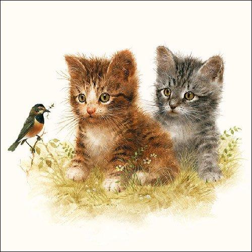 Ambiente Servietten Lunch / Party / Fest ca. 33x33cm Kitten Friend - Ideal As A Gift