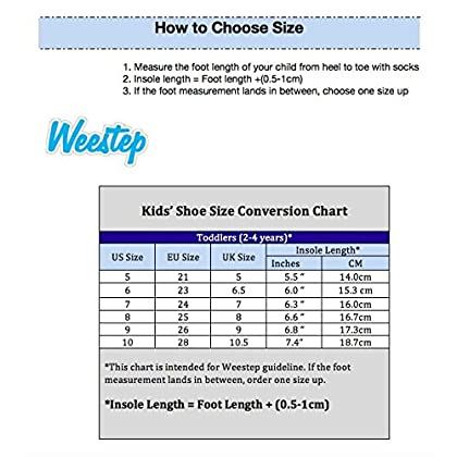 36544ab485a ... Weestep Toddler Little Kid Girls Mary Jane Dress Flat (5 M US Toddler