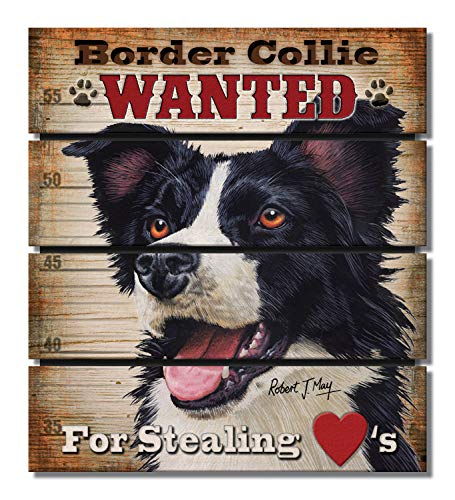 - Highland Home Border Collie Dog Breed Pallet Wood Magnet Made in the USA