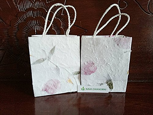 NAVA CHIANGMAI Natural Color Reusable Mulberry Paper Pulp with Dried Flower Petals Kraft Small Gift Bags with Handles size 4 x 2 x 5 Inch Pack of 10 (Twisted Sister Console)