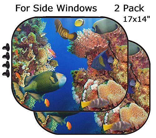 MSD Car Sun Shade - Side Window Sunshade Universal Fit 2 Pack - Block Sun Glare, UV and Heat for Baby and Pet - Image ID 27015725 Coral and Fish in The Red Sea Egypt