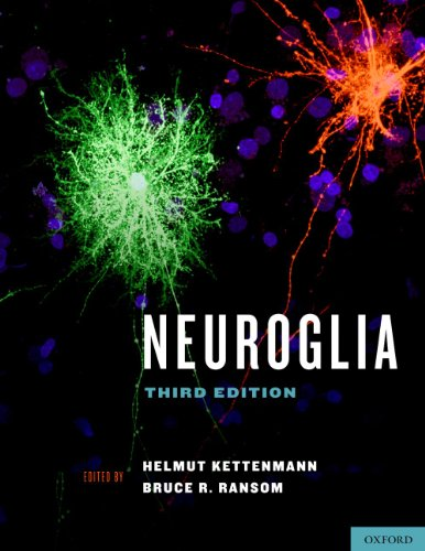 Download Neuroglia Pdf