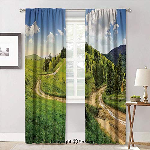 RWNFA Window Curtains for Bedroom Privacy,Hillside Meadow Cloudy Sky Fence Near The Cross Road with Fir Trees on Both Sides Green Blue,Soft Sheer Curtains for Kitchen,52x84inch Each,2 Panels