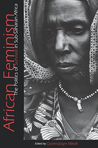 Search : African Feminism: The Politics of Survival in Sub-Saharan Africa
