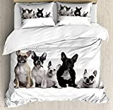 Bulldog Twin Duvet Cover Sets 4 Piece Bedding Set Bedspread with 2 Pillow Sham, Flat Sheet for Adult/Kids/Teens, Group of Young French Bulldogs with Adorable Expressions Animal Lover Photo