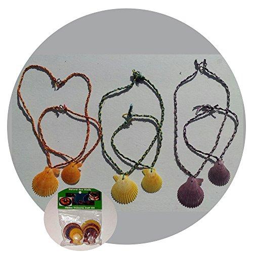 - Muine Shells - Seashell Luau Necklace 12 pack (case) by Seashell Warehouse