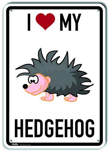 PetKa Signs and Graphics PKAS-0031-NP/_I Love My Hedgehog Plastic Sign 10 x 14 Cartoon Hedgehog
