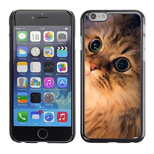 "Premio Sottile Slim Cassa Custodia Case Cover Shell // V00003811 briller // Apple iPhone 6 6S 6G 4.7"""