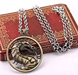 Libaraba Vintage Mortal Kombat Dragon in Circle Pendant Necklace with Jewelry Box,Dragon Necklace for Men (Brassiness)