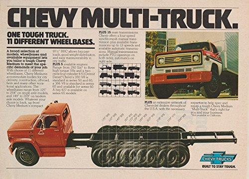 1978 CHEVROLET MULTI-TRUCK SERIES 50, 60 & 65 TRUCKS