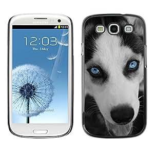 Vortex Accessory Carcasa Protectora Para SAMSUNG GALAXY S3 III i9300 - Husky Eyes Blue Face Muzzle Dog -