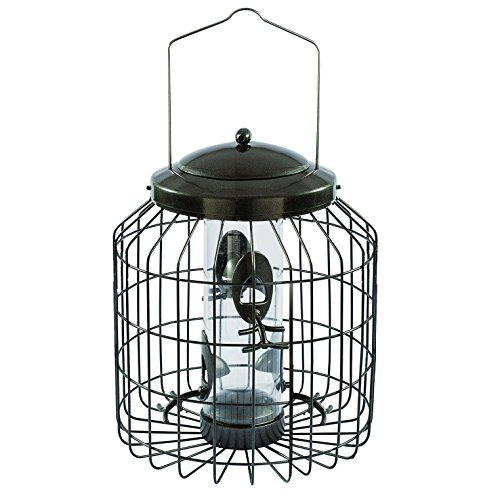 Gardman BA01820 Heavy Duty Squirrel Proof Seed Bird Feeder, 9.45