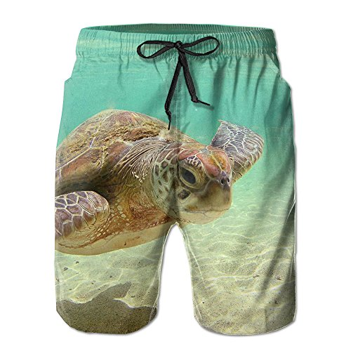 er Beach Board Shorts Swimwear Trunks Quick-drying Pants ()