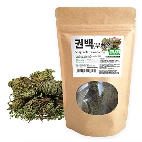 [Medicinal Korean Herb] Selaginella Tamariscina ( Spike Moss / Juanbai / 부처손 ) Dried Bulk Herbs 2oz ( 56g ) (Best Fruits For Liver Cirrhosis)