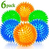Ball Dog Toys - Best Reviews Guide