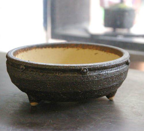 盆栽鉢 信楽焼鉢 茶 直径15cm 鉢底ネット付