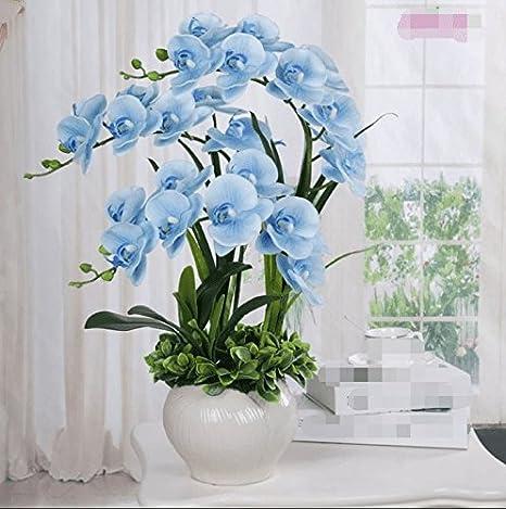 LSRHT Phalaenopsis PU Set Fleurs Artificielles Accueil D/écoration Blanc