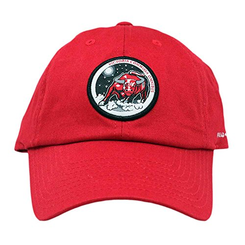 (Skylab NASA Hat Victory for All (Victory Red))